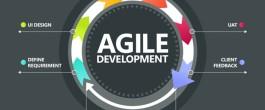 toucan_software_agile